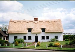 Thatched building.